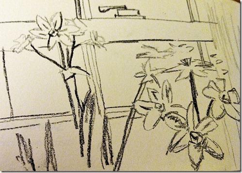 paperwhite sketch