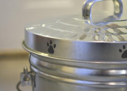 bucket lid