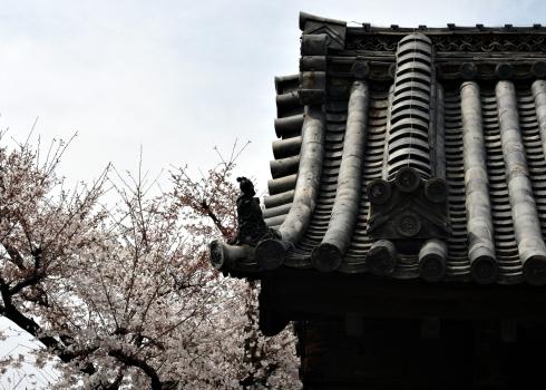 IMG_1305_tondabayashi roof detail