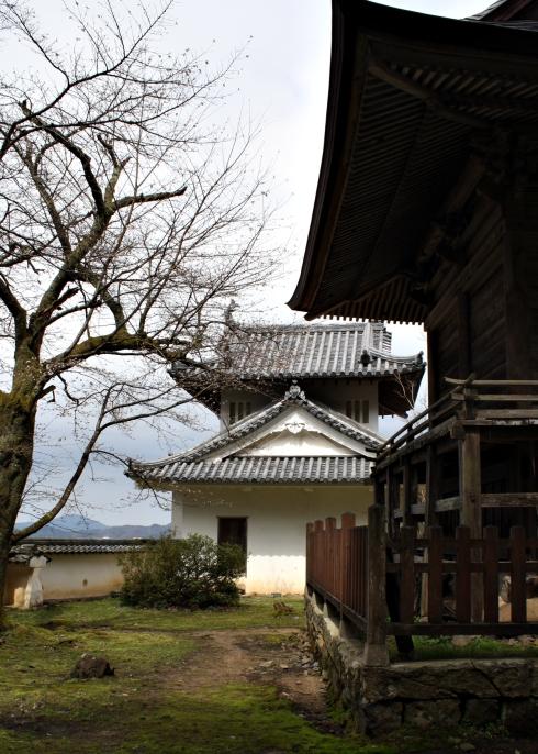 IMG_1467_Izushi